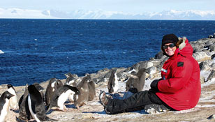Adelie Penguins research