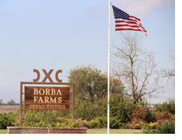 Borba farms