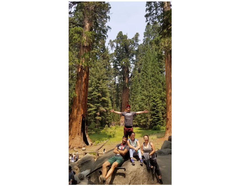 Azores students in Sequoia