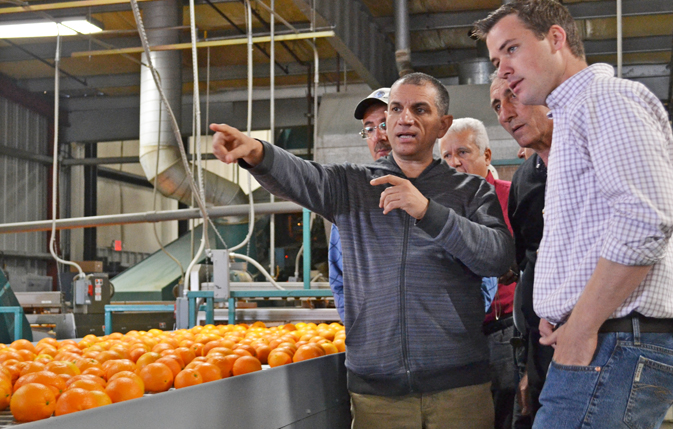 Tour of citrus plant