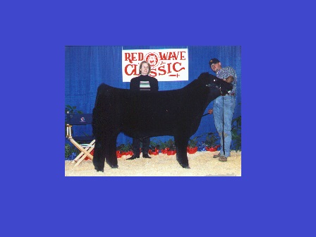 Reserve Grand Champion Steer 2000