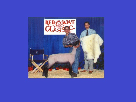 Reserve Grand Champion Lamb 2000