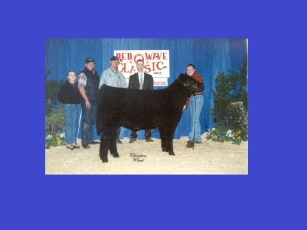 Reserve Grand Champion Steer 2002