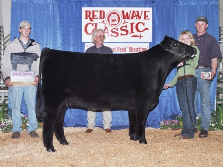 Grand Champion heifer 2003