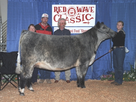 Reserve Grand Champion heifer 2003
