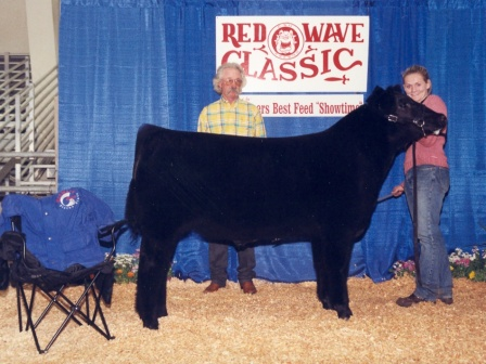 Reserve Grand Champion Steer 2003