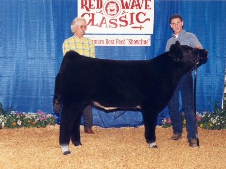 Reserve Grand Champion Futurity Steer 2003