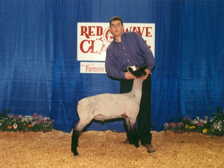reserve Grand Champion Futurity Lamb 2003