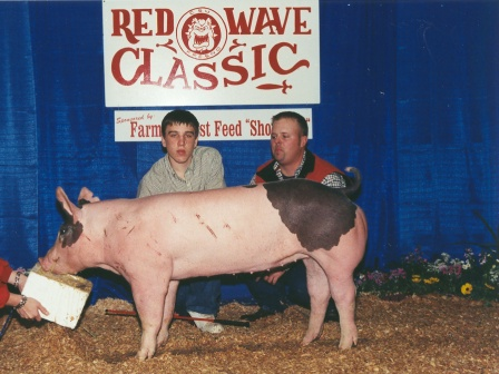 Reserve Grand Champion Hog 2003