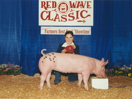Reserve Grand Champion Futurity Hog 2003