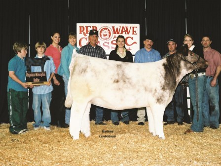 Grand Champion Heifer 2006