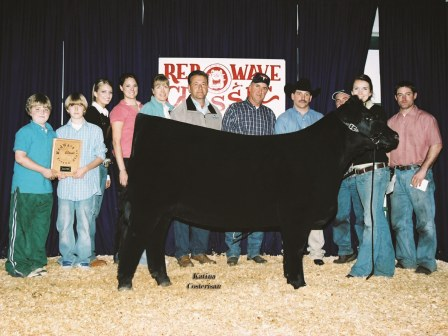 reserve Grand Champion Heifer 2006