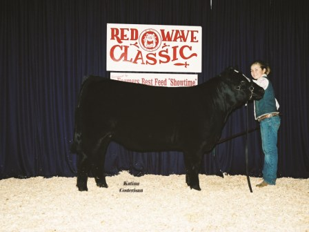 Grand Champion Futurity Heifer 2006