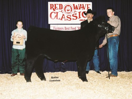 Reserve Grand champion Steer 2006