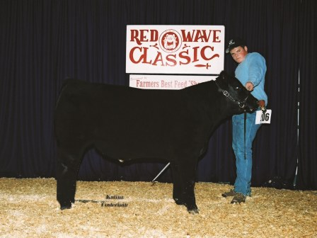 Reserve Grand Champion Futurity steer 2006