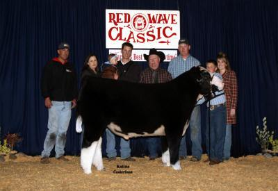 Reserve Grand Champion Steer 2007