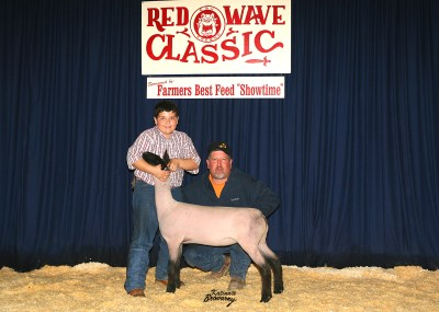 Reserve Grand Champion Futurity Lamb 2008