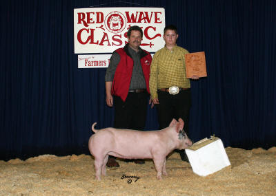 Reserve Grand Champion Hog 2008