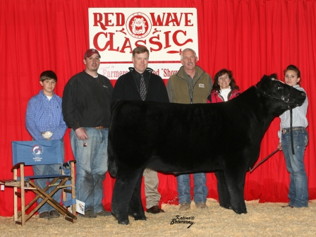 Reserve Grand Champion Steer 2009
