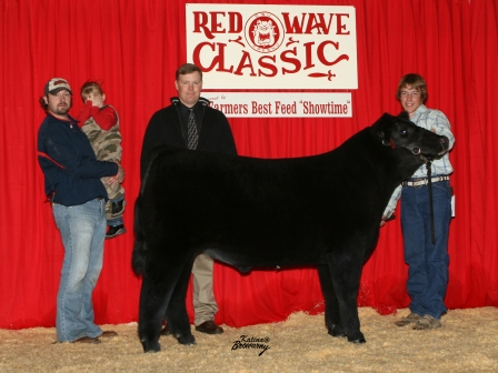 Grand Champion Futurity Steer 2009