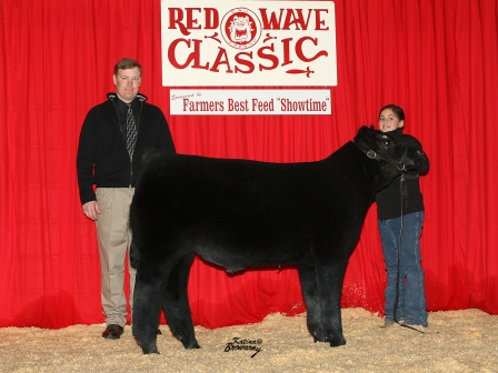 Reserve Grand Champion Futurity Steer 2009