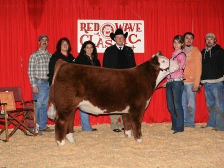 Reserve Grand Champion Steer 2010