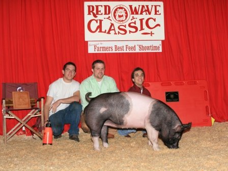 Reserve Grand Champion Hog 2010