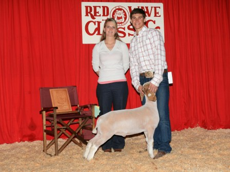reserve Grand Champion meat goat 2010