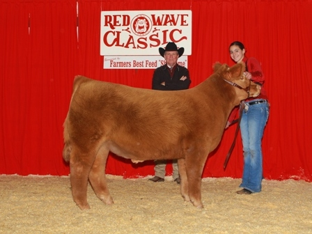Reserve Grand Champion Steer 2012