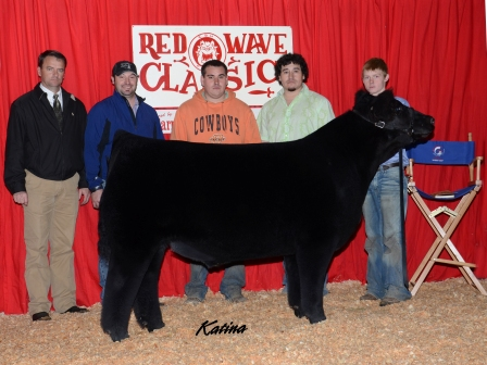 Reserve Grand Champion Steer 2013