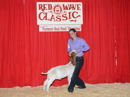 Reserve Grand Champion Meat Goat 2013