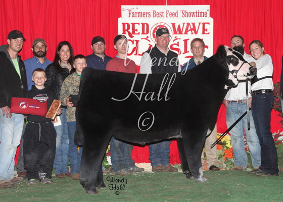 Reserve Grand Champion Steer 2014