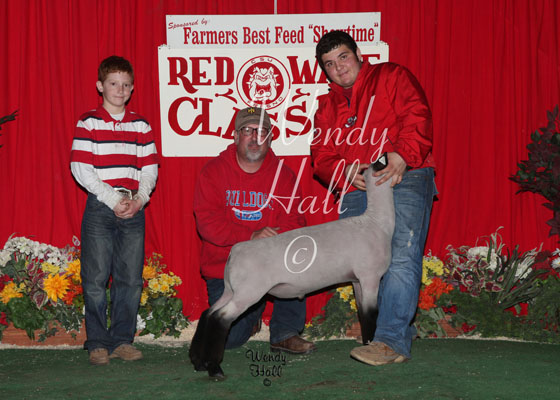 Grand Champion futurity Lambs 2014