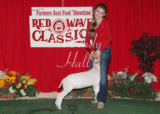 Grand Champion Futurity meat goat 2014