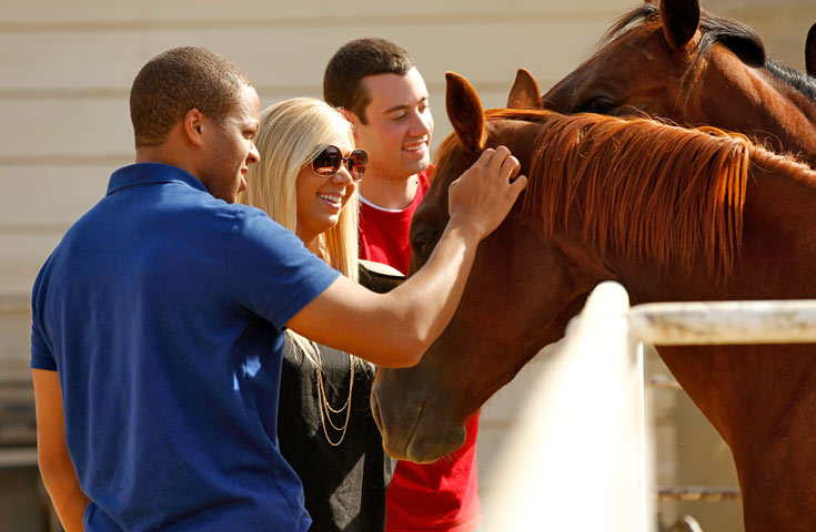 Students petting horses at the Fresno State stables